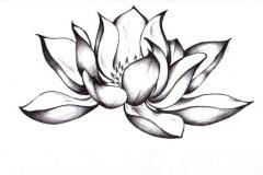 Eskizy-tatu-lotosa-103