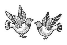 dove-pigeon-birds-tattoo-sketch-engraving-vector-26345960-1
