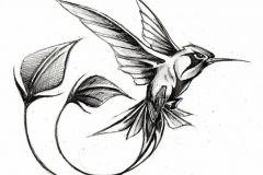 eskiz-tatu-kolibri-1