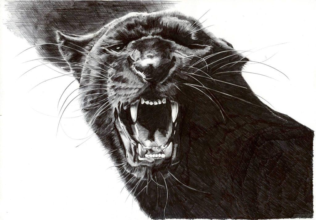 Значение тату пантера5